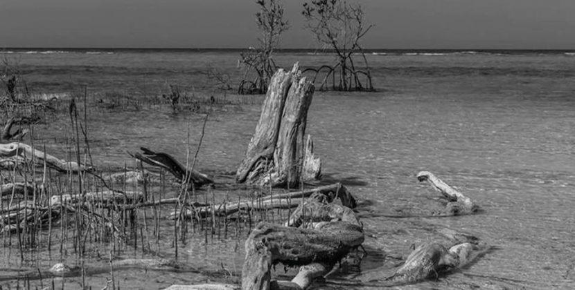 Pete Berwick – Islands (Self Release)