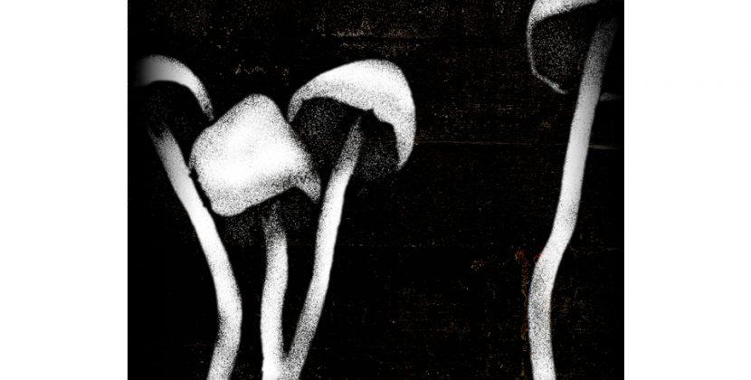 Headsticks – Kept In The Dark (STP Records)
