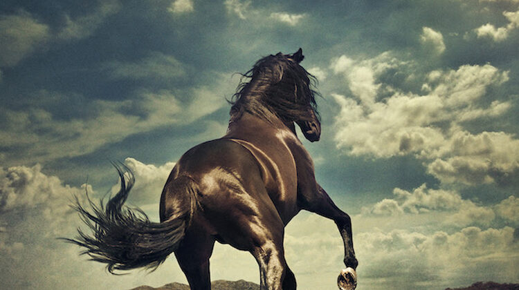 BRUCE SPRINGSTEEN  – New Video & Studio Album 'WESTERN STARS' coming this June