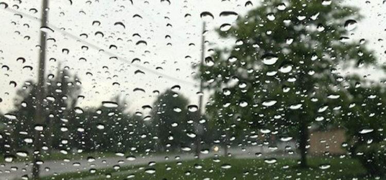 Rainy Days & Mondays