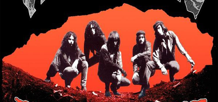 The Fuzztones- 'Raw Heat' (Bang Records)