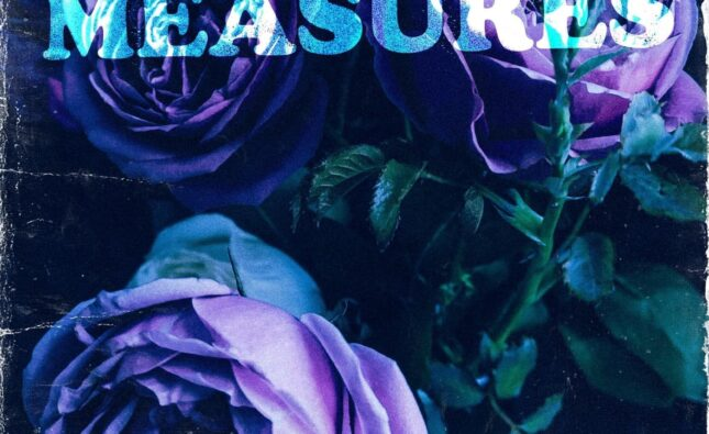 Desperate Measures Flowers At Your Door Video and tour news